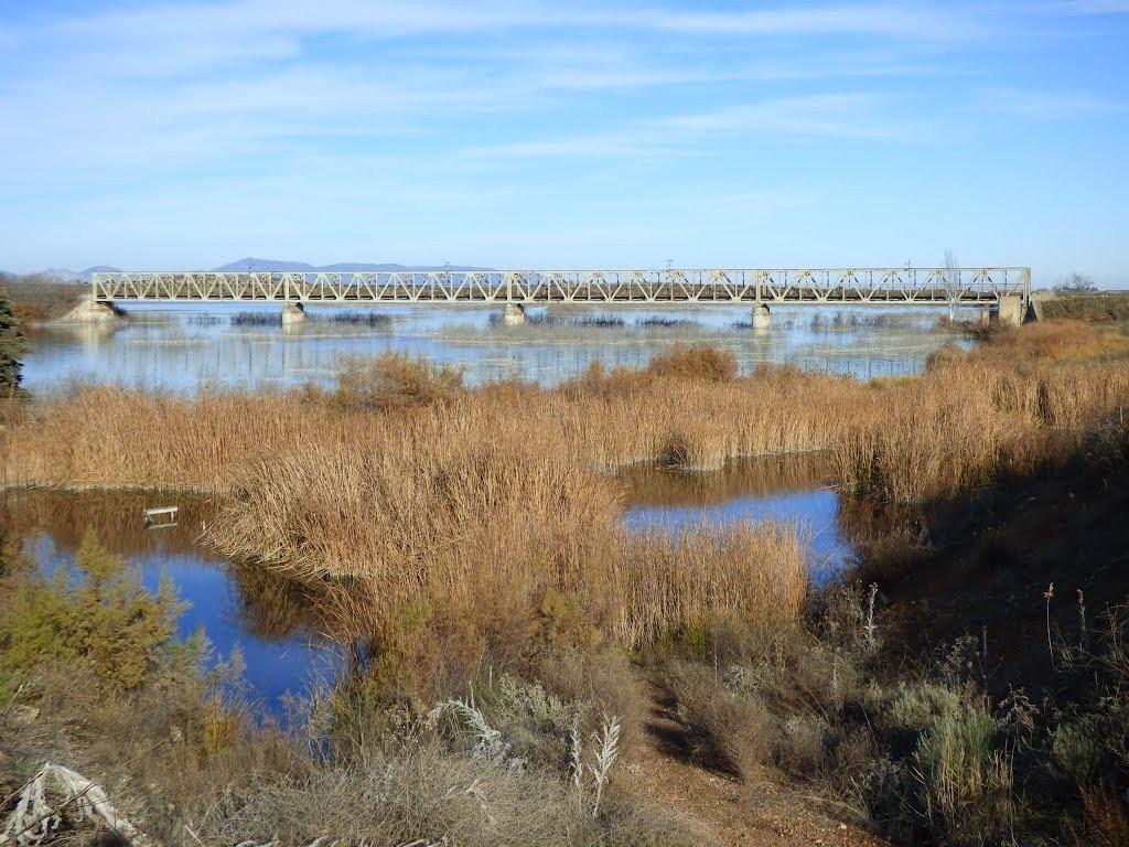 Puente de hierro du camino manchego sur le Guadiana (source