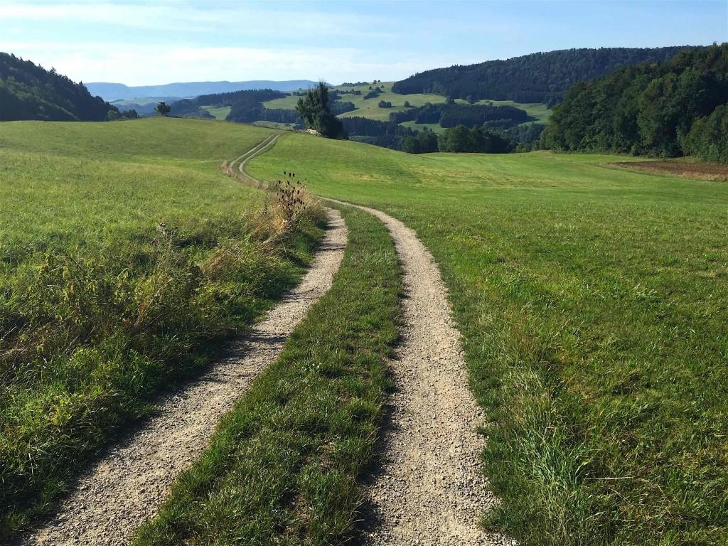 Magnifique chemin entre Mundelfingen (Hüfingen) et Blumberg